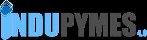 Proyecto Indupymes