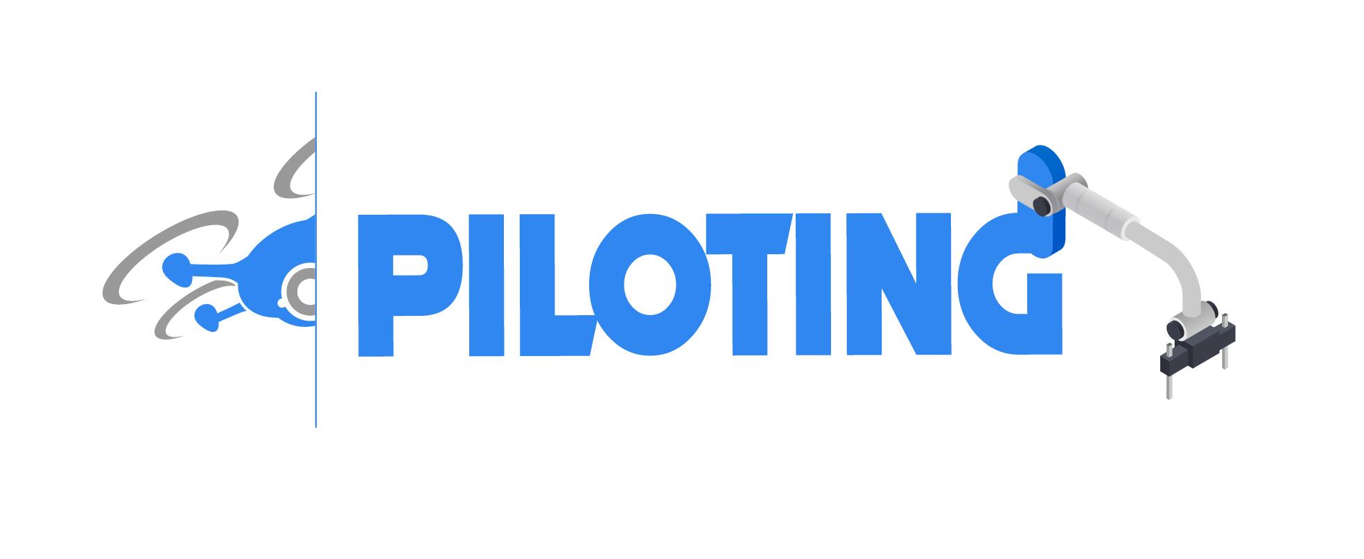 Proyecto Piloting